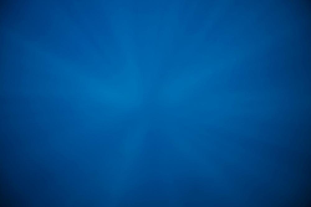 Africa, Tanzania, Zanzibar, Matemwe Bay, Underwater in Indian Ocean
