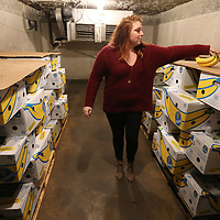Carra Cockrell reaches for bunch of Bananas to place in a fruit basket as she walks out of one of the many coolers in the warehouse at Cockrell Banana in Tupelo.