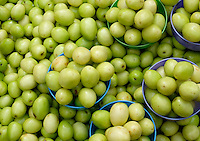 YANGON, MYANMAR - CIRCA DECEMBER 2013: Variety of green tomato in the street market of Yangon.