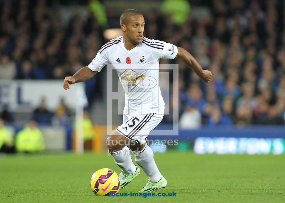 Wayne Routledge of Swansea City in action against Everton during the Barclays Premier League match at Goodison Park, Liverpool.<br /> Picture by Michael Sedgwick/Focus Images Ltd +44 7900 363072<br /> 01/11/2014