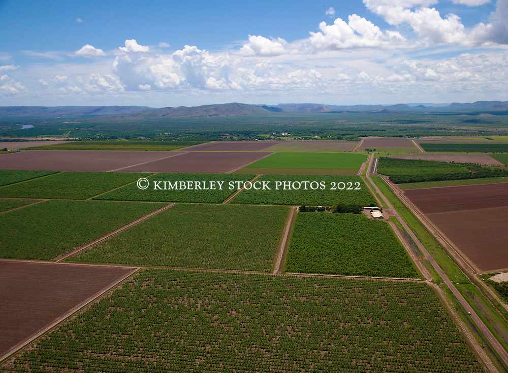 Agricultural land outside Kununurra, part of the Ord Irrigation scheme.