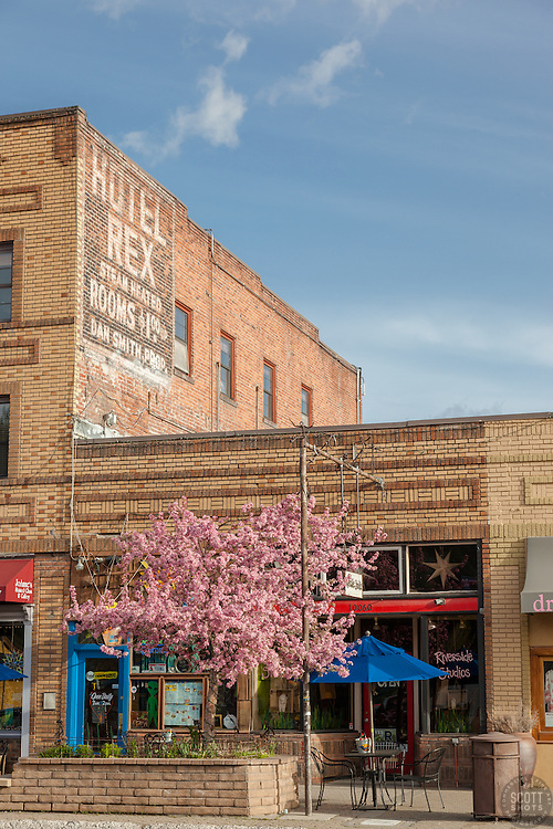 """Downtown Truckee 17"" - Photograph of brick buildings in historic Downtown Truckee, California with a blossoming crabapple tree in the foreground."