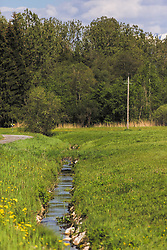 THEMENBILD - ein kleiner Bachlauf im Kapruner Moos, aufgenommen am 23. Mai 2019, Kaprun, Österreich // a small stream in the Kapruner Moos on 2019/05/23, Kaprun, Austria. EXPA Pictures © 2019, PhotoCredit: EXPA/ Stefanie Oberhauser