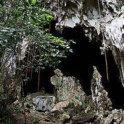 Samana Bay, Los Haitises National Park, Dominican Republic.