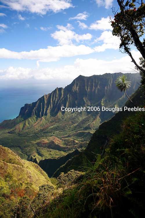 Kalalau Valley from Kokee, Kauai, Hawaii