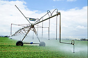 Israel, Beit Shean Valley, Kibbutz Rupin, A computerized mobile sprinkler line This line advances automatically by computerized feedback producing an even and efficient water covering of this Alfalfa field