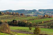 Landschaft, Felder bei Grafenau, Bayerischer Wald, Bayern, Deutschland   landscape, fields near Grafenau, Bavarian Forest, Bavaria, Germany
