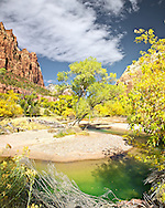 Autumn colors at Little Bend on the Virgin River in Zion National Park