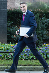 Downing Street, London, January 17th 2017. Chief Whip (Parliamentary Secretary to the Treasury) Gavin Williamson arrives at the weekly cabinet meeting at 10 Downing Street.