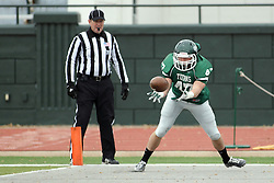 15 November 2014:  Cameron McGlynn during an NCAA division 3 football game between the North Park Vikingsand the Illinois Wesleyan Titans in Tucci Stadium on Wilder Field, Bloomington IL