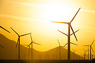 24 APR 2014: San Gorgonio Pass Wind Farm in Palm Springs, CA. ©Brett Wilhelm