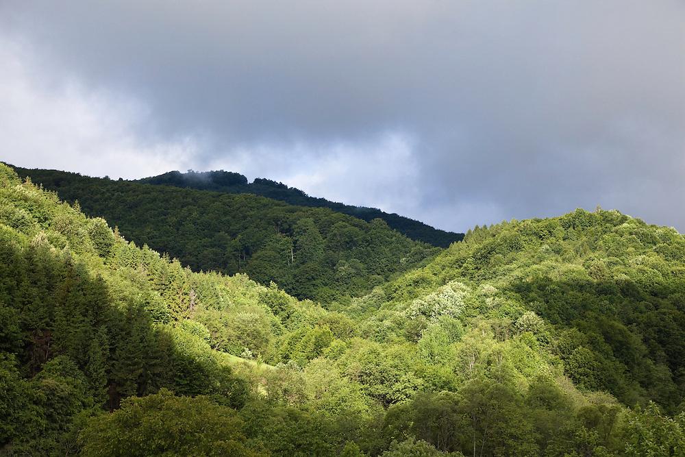 Poloniny National park, Western Carpathians, Slovakia, Europe
