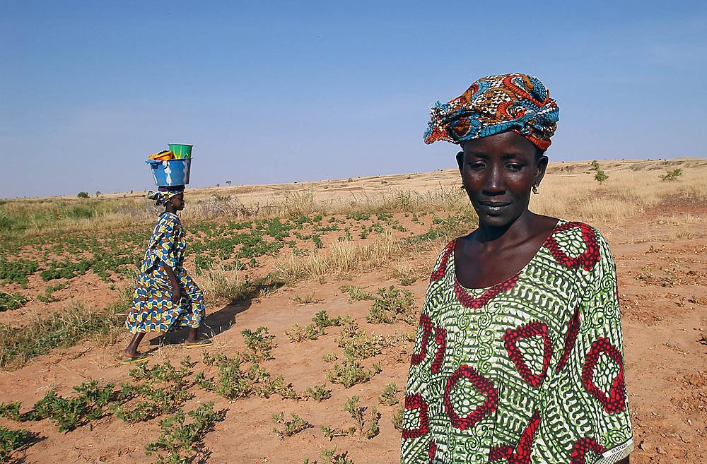 Des paysannes dans leur champ d'arachide. Suite à l'invasion de criquets de 2004 et à la sécheresse, les récoltes sont mauvaises.