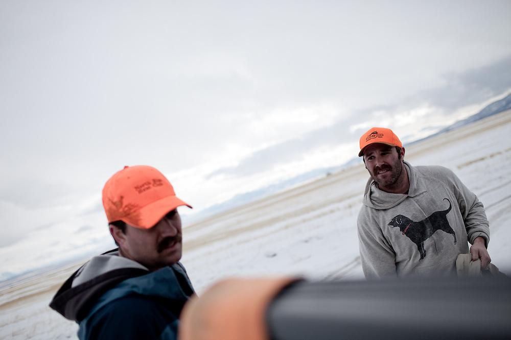 Upland bird hunting southwest of Salt Lake City, UT.