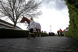General view of Eddystone Rock being lead into the parade ring before the Matchbook Betting Podcast Rosebery Handicap during the Easter Family Fun Day at Kempton Park Racecourse. PRESS ASSOCIATION Photo. Picture date: Saturday March 31, 2018. See PA story RACING Kempton. Photo credit should read: Steven Paston/PA Wire