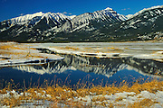 Athabasca River<br /> Jasper NAtional PArk<br /> Alberta<br /> Canada