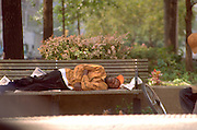 Homeless man 34 sleeping in park.  New York New York USA