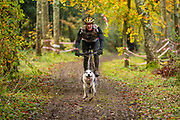 Male Competitor in bikejor class during the WSA Dryland World Championship 2019 at Firle Country Estate in the South Downs National Park, Lewes, Sussex, United Kingdom on 17 November 2019.