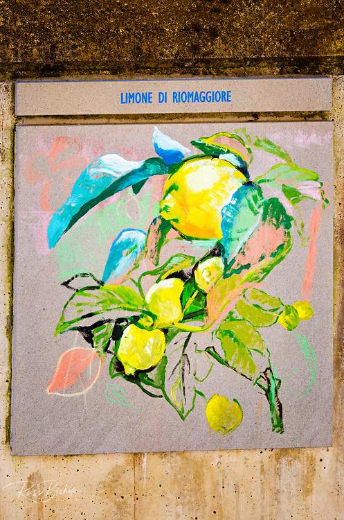 Painting of local lemons, Riomaggiore, Cinque Terre, Liguria, Italy