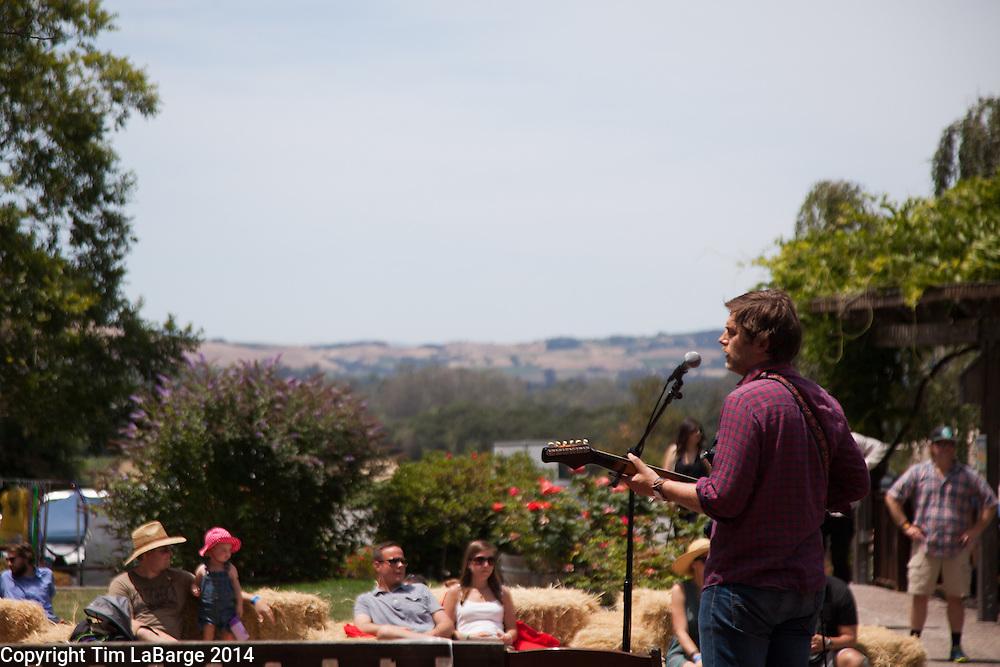 Eric D. Johnson, EDJ, performs at Huichica Music Festival 2014 held at Gunlach Bundschu Winery in Sonoma, CA. Photo © Tim LaBarge 2014
