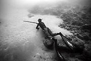 free dive..All rights reserved to Gilad Kavalerchik..giladka@netvision.net.il.www.Giladka.com.. mobile +972-52-3387998