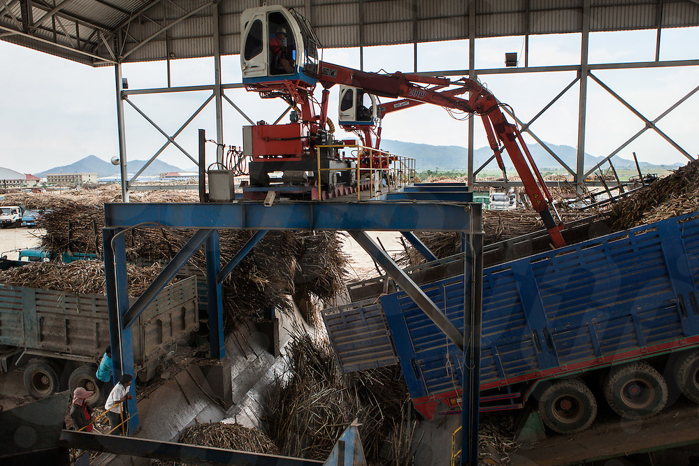 Trucks off load the sugar cane onto a belt that leads the cane into a crusher at the Phnom Penh Sugar factory. Kampong Speu, Cambodia. 29 March 2013. © Nicolas Axelrod / Ruom