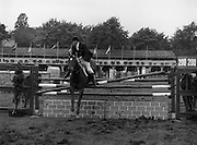 "07/08/1980<br /> 08/07/1980<br /> 07 August 1980<br /> R.D.S. Horse Show: John Player Top Score Competition, Ballsbridge, Dublin. Brian Henry on ""Marble Arch""."