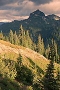 Dewey Peak in the William O Douglas Wilderness, Wenatchee National Forest, WA, USA in evening light viewed from the Pacific Crest Trail near Chinook Pass in Mount Rainier National Park.
