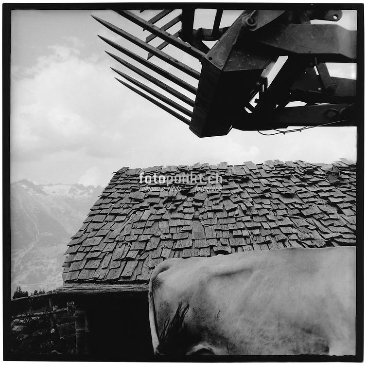 Cowback and dregde shewel infront of a broken old shingle-roof, Baggerschaufel, kaputtes Schindeldach, tavillons, toit, defectueux, alpage, Valais, Turtmann
