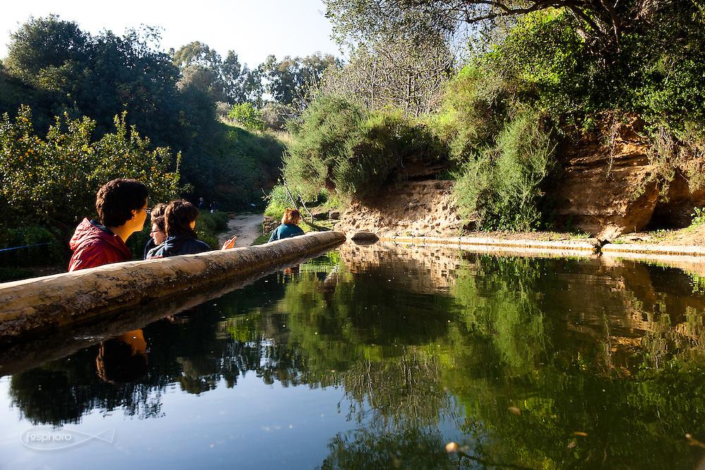 Agrigento, Valle dei Templi. Visitatori si affacciano nella vasca del Giardino della Kolymbetra. Proprietà FAI. ©2012 Vince Cammarata | FOS