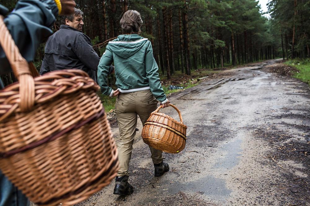 Vladimir Shashilov and Julia Schelkunova guide a mushroom hunt on Saturday, August 24, 2013 in Suzdal, Russia.