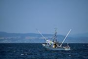 Fishing Boat, Monterey Bay, Monterey, California