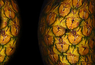 Pineapple Planets.  The surface of the pineapple appears planetary in its texture.