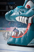 KELOWNA, CANADA - DECEMBER 7: Jackson Whistle #1 of the Kelowna Rockets enters the ice against the Kootenay Ice on December 7, 2013 at Prospera Place in Kelowna, British Columbia, Canada.   (Photo by Marissa Baecker/Shoot the Breeze)  ***  Local Caption  ***