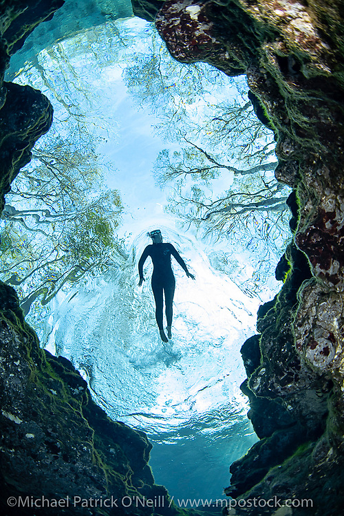 A snorkeler swims in the ultra clear waters of Ginnie Springs in North Florida.