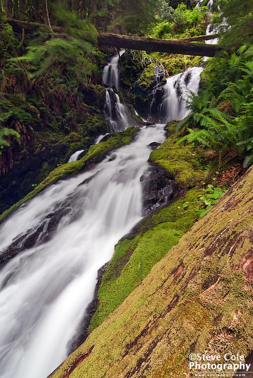 Cascade Creek Falls - North Fork Nooksack River Valley