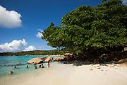 The sandy beach of the Seychelles island in the Indian Ocean