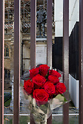 One day after British Prime Minister Boris Johnson successfully asked the Queen to suspend (prorogue) Parliament in order to manoeuvre his Brexit deal with the EU in Brussels, red roses are left attached by two Remainers at the railings of the Houses of Parliament where the statue of English Civil War military and political leader, Oliver Cromwell stands on 29th August 2019, in Westminster, London, England.