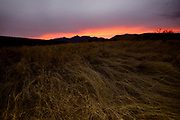 Sunset along forest dervice road 92 in the foothills of the Santa Rita Mountains of the Coronado National Forest in the Sonoran Desert north of Sonoita, Arizona, USA.