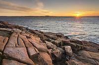 Sunrise at Otter Cliffs, Acadia National Park
