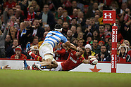 121116 Wales v Argentina rugby
