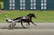A driver and horse head for the finish line during a harness race at Goshen's Historic Track on June 7, 2008.