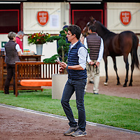 Arqana October Yearling Sale Deauville 16/10/2017, photo: Zuzanna Lupa