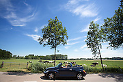 In Zeist rijdt een Chrysler cabriolet door de hitte langs de weilanden.<br /> <br /> In Zeist a convertible rides near the pastures.