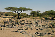 At the bottom of Oldupai Gorge, Tanzania