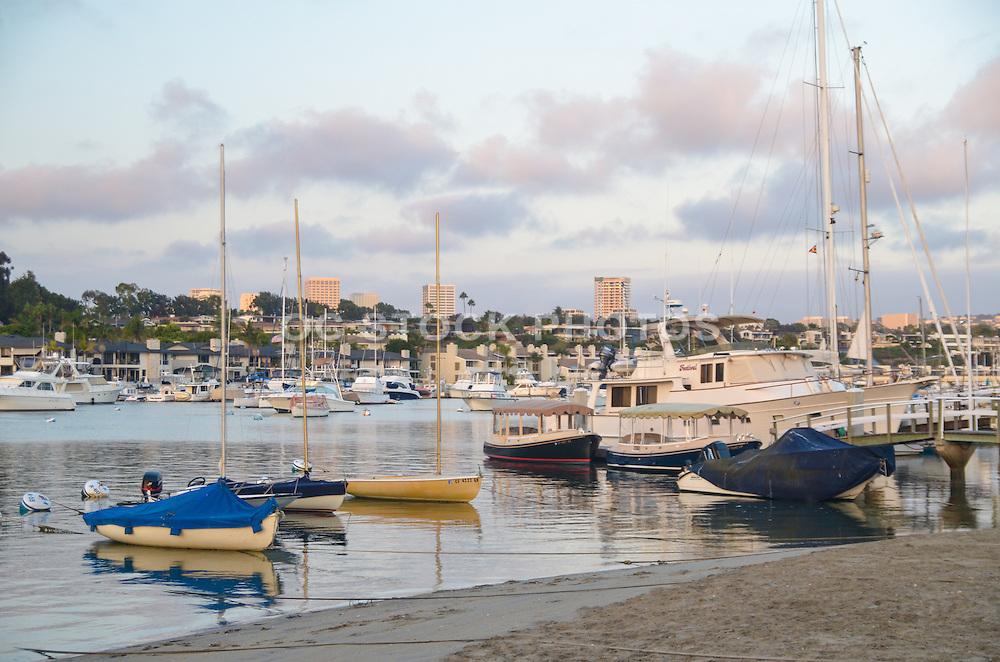 Sailboats Docked in Newport Beach Harbor