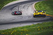 May 4-6 2018: IMSA Weathertech Mid Ohio. 67 Ford Chip Ganassi Racing, Ford GT, Ryan Briscoe, Richard Westbrook