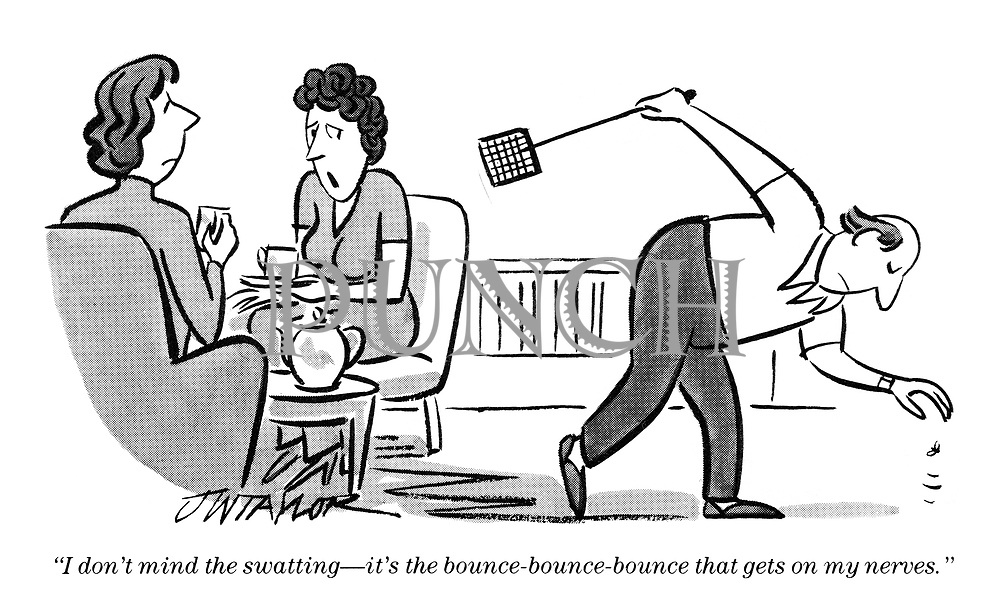 """""""I don't mind the swatting - it's the bounce-bouce-bounce that gets on my nerves."""""""