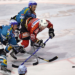 20080217: Ice Hockey - EBEL league, Acroni Jesenice vs Linz