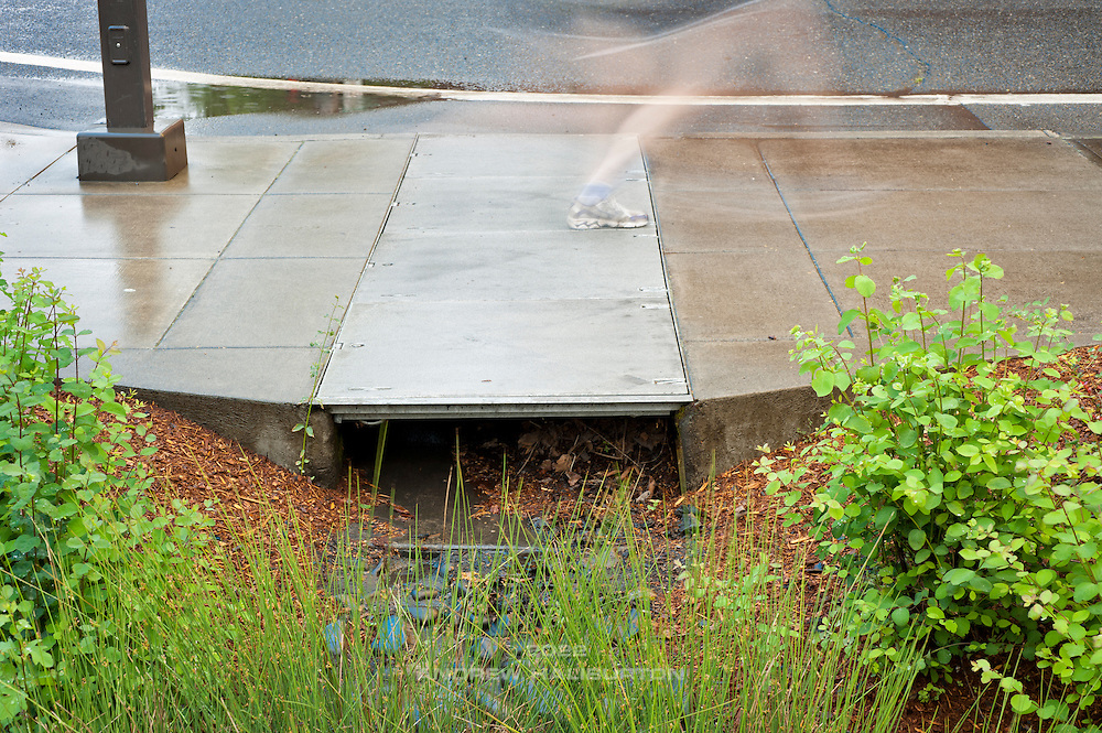 A public-private stormwater management partnership (PPP) - the first of its kind in Portland.  Runoff from the public street flows into a treatment swale on private property, where vegetation filters out pollutants before it soaks into the ground, naturally recharging groundwater.  RiverEast Center Stormwater Management facility in Portland, Oregon.
